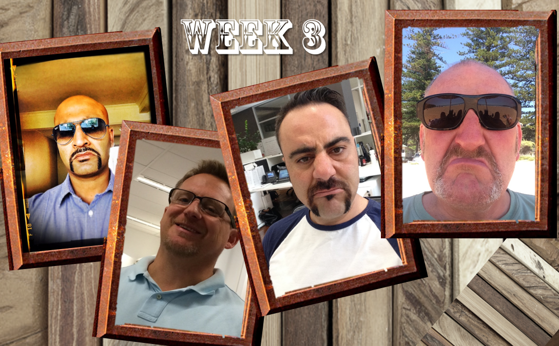 Movember Week 3 Update PM-Partners group