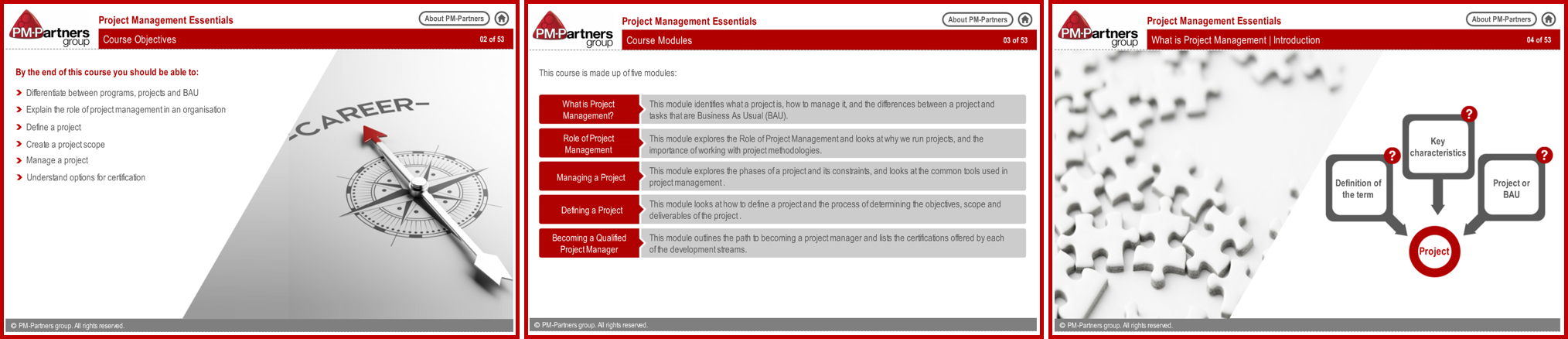 Project Management Essentials Course Online