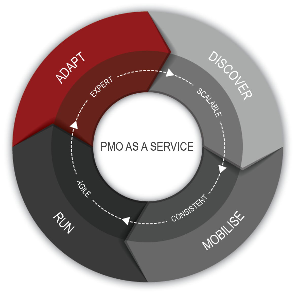 PMO_as_a_Service_PM-Partners_group