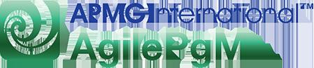 agile programme management foundation