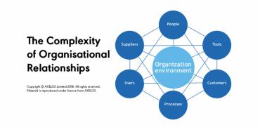 organisational relationships pm partners